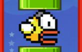 Smashy Bird