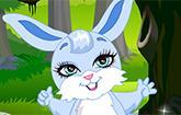 Fantasy Bunny